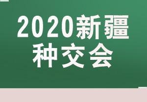 2020新疆种子会