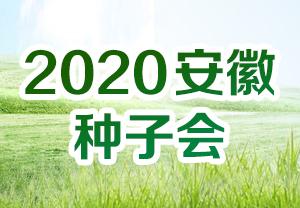 2020安徽种子会