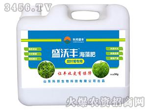 甜菜菊专用海藻肥-盛沃丰-科邦盛丰