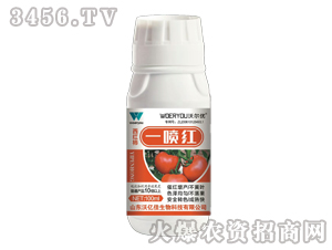 西红柿一喷红-沃尔优