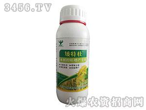 水稻控旺增产专用调节剂-矮特壮-迪斯曼