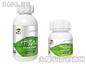 叶菜类专用含氨基酸水溶肥-叶易健-鼎盛