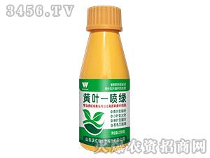 黄叶一喷绿-植物营养促进液-沃亿佳