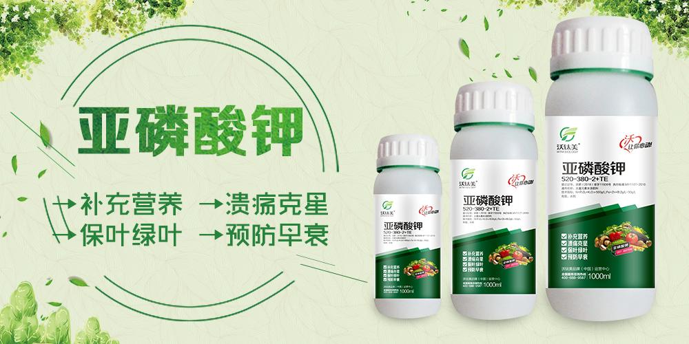河南沃肽美农业科技万博manbetx官网客服2.jpg
