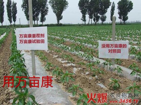 郑州万亩康生物科技万博manbetx官网客服