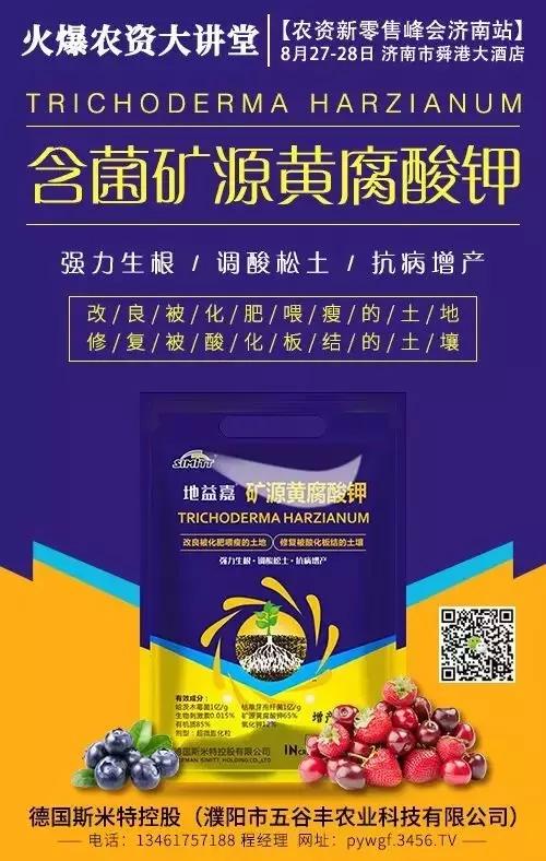 火爆龙8国际欢迎您大讲堂济南站:斯米特人气爆棚,展现魅力!