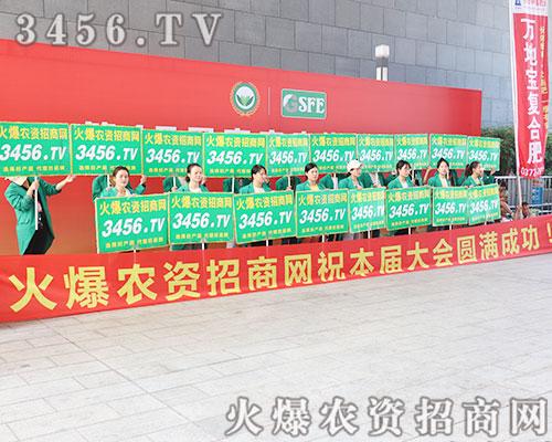 3456.TV团结一致携手并肩征服2019南宁龙8国际欢迎您会!