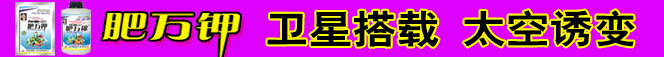 以色列昕爵国际集团(中国)万博manbetx官网客服