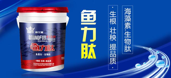 田加力—格兰富品牌