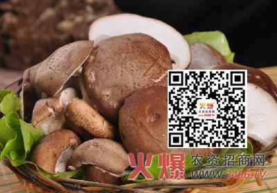 该咋防治香菇木霉虫害的危害?