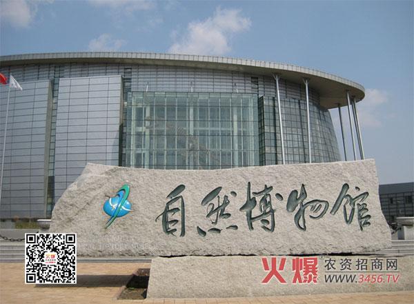 吉林省自然博物馆 东北师范大学自然博物馆暨吉林省自然博物馆始建于1987年7月20日,原隶属于吉林省文化厅,为吉林省唯一省级自然博物馆。2001年1月1日,吉林省政府为让自然博物馆获得更好发展并发挥更大功能,决定将吉林省自然博物馆整建制地划给东北师范大学,并且每年仍由省财政对自然博物馆进行全额拨款,而且决定为建设新馆投资4000万元,另由东北师范大学投资5300万元,总投资达9000多万元人民币建设自然博物馆新馆。新馆建设是吉林省十五计划重点项目之一,场馆占地面积4公顷,建筑面积14700平方米,展厅