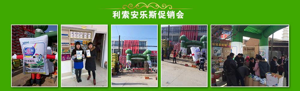 利索企业(中国)投资有限公司