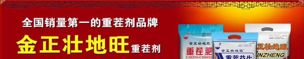 郑州金正生物化工有限公司