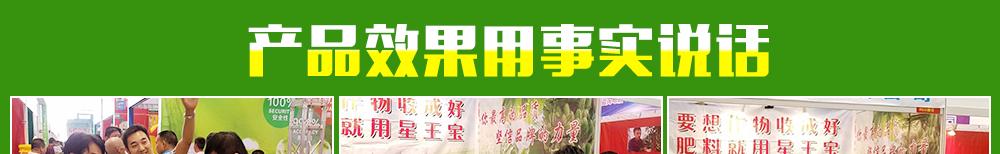 广州市植宝化肥有限公司