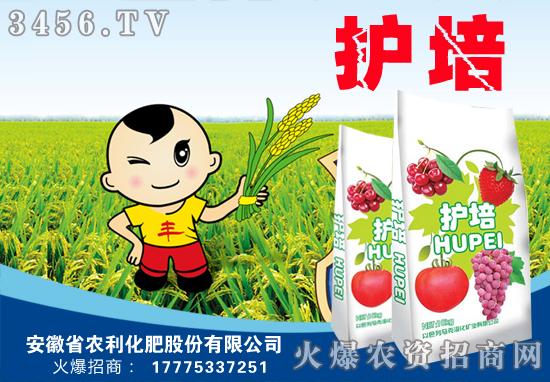 【安徽农利】祝您美满幸福浴春风,卯年更上一层楼!