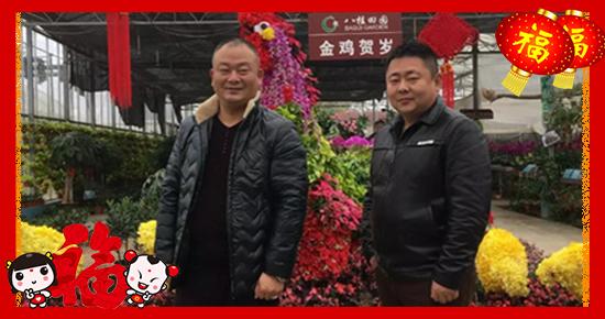 【六道福】祝大家在2017年里事业兴旺、万事如意、阖家幸福!
