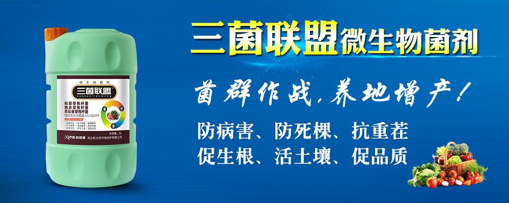 申博太阳城最新网址