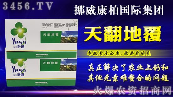 实力铸就,品质担当!火爆农资大讲堂哈尔滨站康柏叶盛再度签单!
