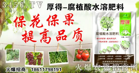 【北京标驰】厚得腐殖酸水溶肥料,保花保果、膨果壮果!