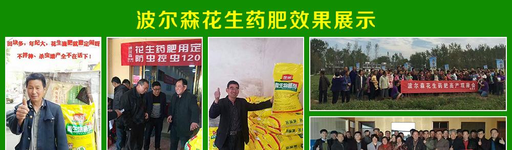 河南波尔森农业科技有限公司(波尔森药肥事业部)