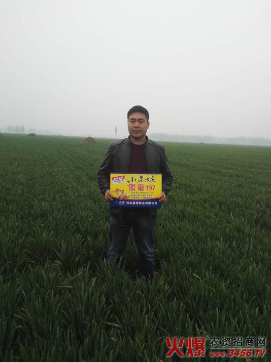 河南晨博种业有限公司