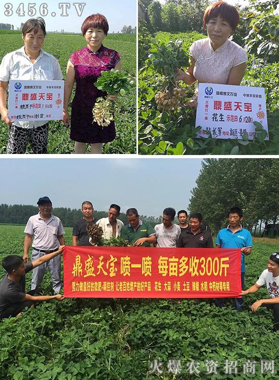 河南博文农业科技有限公司
