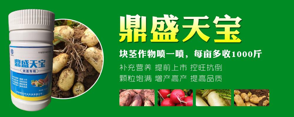 河南博文农业科技有限公