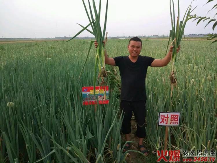 山东永禾生物科技有限公司