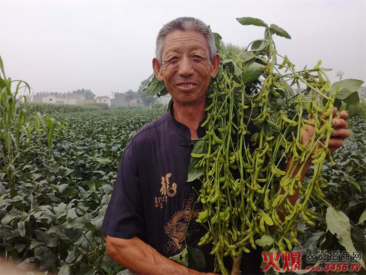 河南省聚粮种业科技有限公司