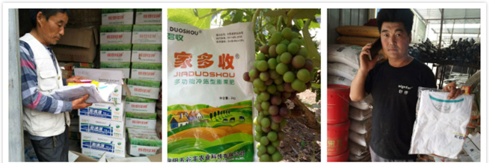 濮阳五谷丰农业产品效果展示图