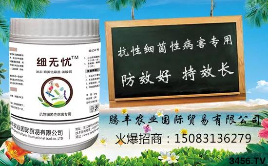 火爆农资大讲堂济南站-腾丰农业再传捷报,惊喜连连!
