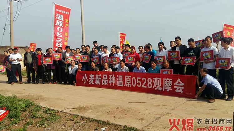 温县温原种业有限公司