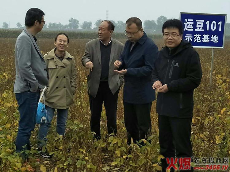 河南群帅农业发展有限公司