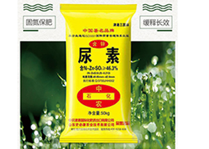 木耳菜什么时间种植好 木耳菜水肥管理方法