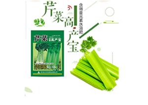 芹菜什么时间种植 芹菜种植技术与种植时间