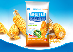台风过后玉米倒伏严重怎么办 玉米倒伏解决方法