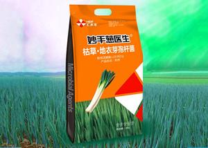 大葱如何育苗 大葱病虫害怎么防治