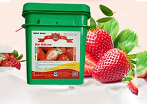 草莓怎么施肥 草莓种植技巧 施肥注意事项