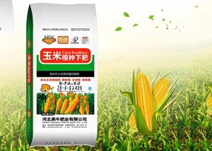 玉米生长周期 玉米生长期划分