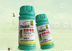 韭菜种植时间 种植方法 水肥管理