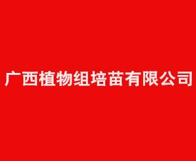 广西植物组培苗有限公司