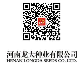 河南龙大种业有限公司