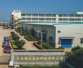 山东腾龙生物科技有限公司