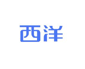 贵州西洋实业有限公司