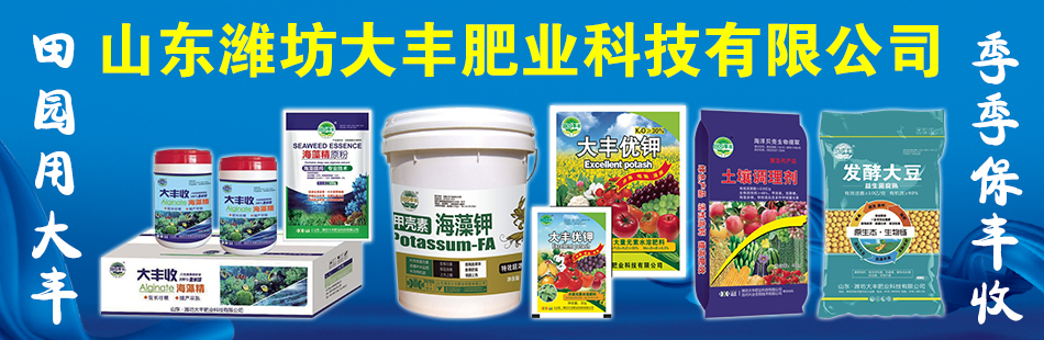 山东潍坊大丰肥业科技有限公司