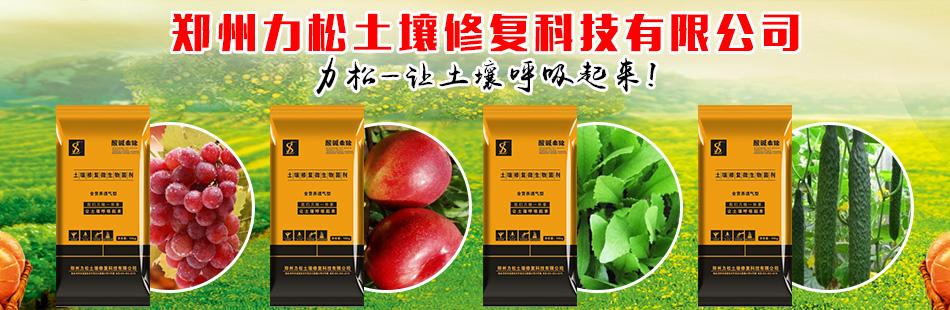 郑州力松土壤修复科技有限公司