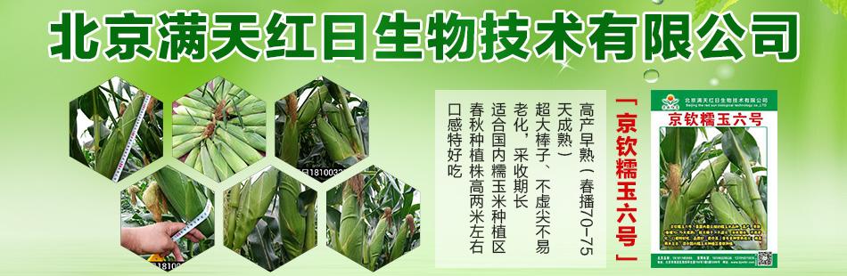北京满天红日生物技术有限公司
