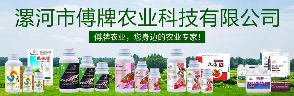 漯河市傅牌农业科技有限公司