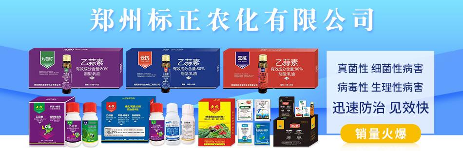 郑州标正农化有限公司