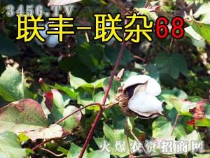 联丰-联杂68